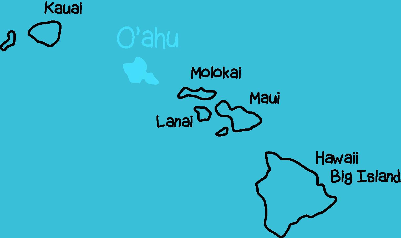 Hawaii Surf Camp