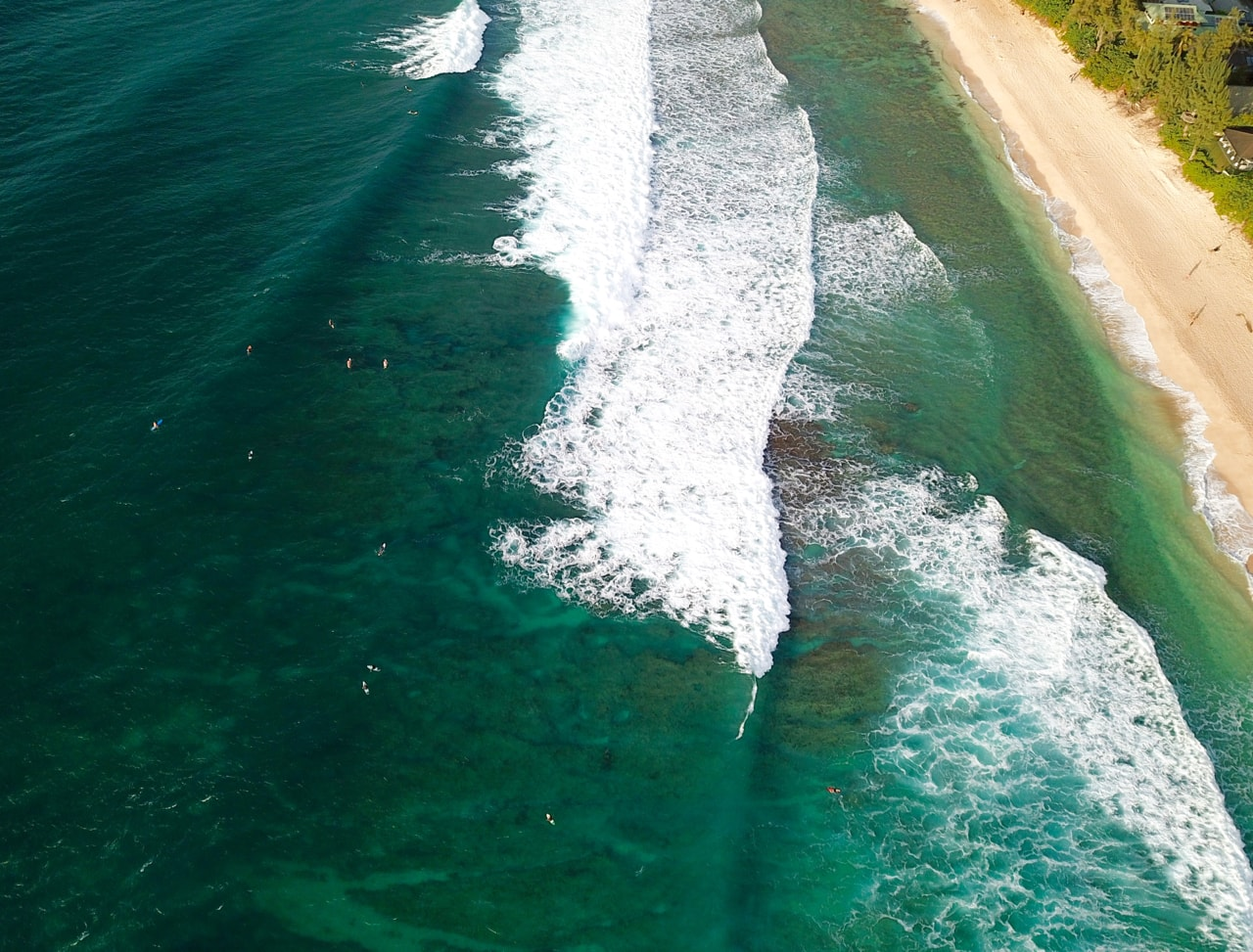 what you never knew about surfing