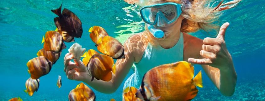 7 Best Spots for Snorkeling in Hawaii