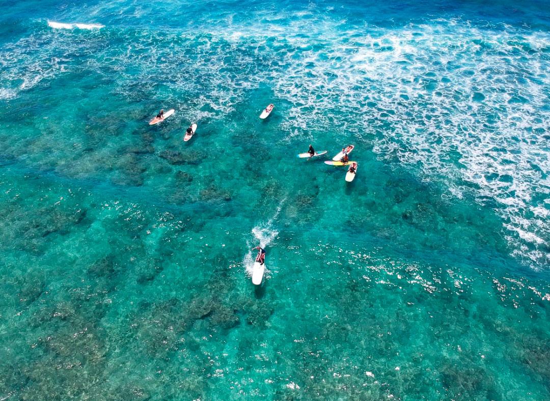surf honolulu